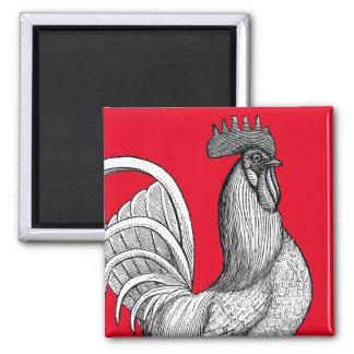 Imã Ímã do galo da galinha do vintage