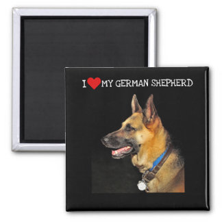 Imã Ímã do german shepherd