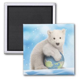 Imã Ímã do mundo do urso polar