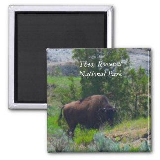 Imã Ímã do ND do parque nacional de Theodore Roosevelt
