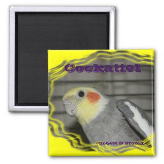 Imã ÍMÃ do pássaro do animal de estimação do Cockatiel
