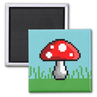 Imã Ímã do prado do cogumelo do pixel