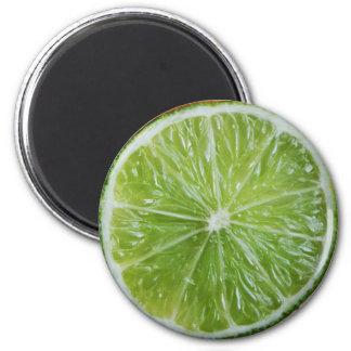 Imã Ímã do refrigerador de Foodie do limão