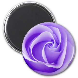 Imã Ímã do rosa do roxo