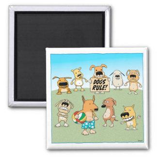 Imã Ímã engraçado da regra dos cães