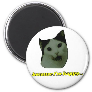 Imã Ímã feliz da cara do gato
