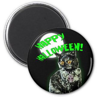 Imã Ímã feliz do Dia das Bruxas do gato do zombi