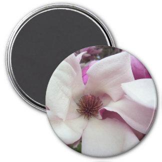 Imã Ímã - flor da magnólia de pires