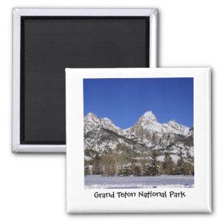 Imã Ímã grande do parque nacional de Teton
