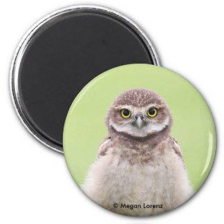Imã Ímã macio do Owlet