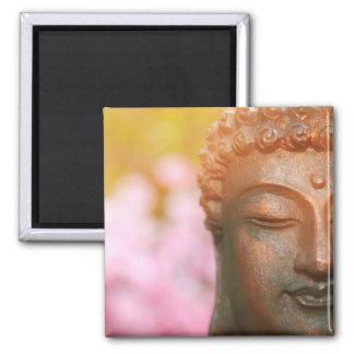 Imã Ímã Meditating de Buddha com flores de cerejeira