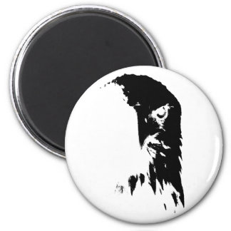 Imã Ímã preto & branco da águia americana