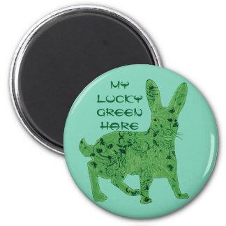 Imã Ímã verde afortunado da lebre  