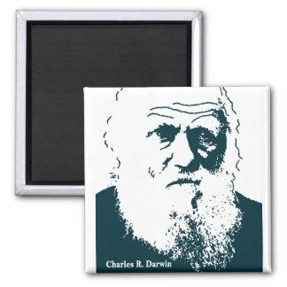 Imã Imagem de Darwin. Ímã
