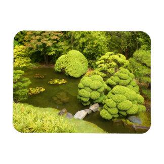 Ímã japonês da lagoa #6 do jardim de chá de San