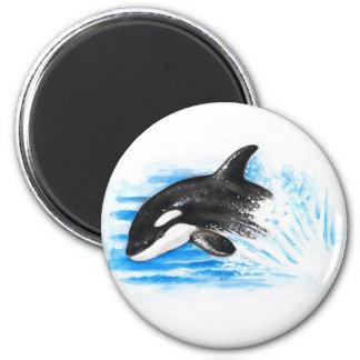 Imã Jogo da orca