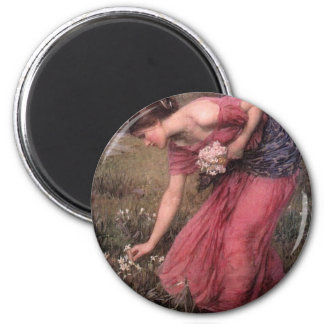 Imã John William Waterhouse - narciso - belas artes