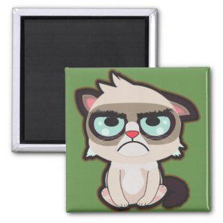 Imã Kawaii, o divertimento e o gato grimmy engraçado