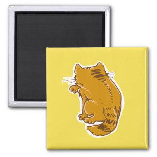 Imã lambendo desenhos animados do doce do gato de gato