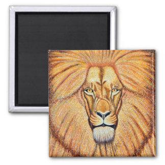 Imã Leão