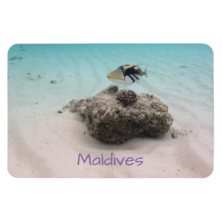 Ímã Lembrança coral subaquática dos peixes de Maldives