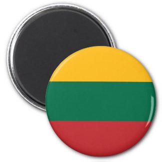 Imã Lietuvos Valstybės Vėliava, Vytis, bandeira de