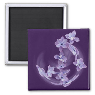Imã Lilac no círculo