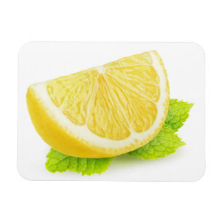 Ímã Limão & hortelã