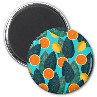 Imã limões e cerceta das laranjas