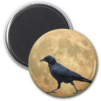 Imã Lua cheia, corvo de passeio