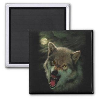 Imã Lua do lobo