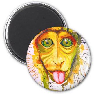 Imã Macaco