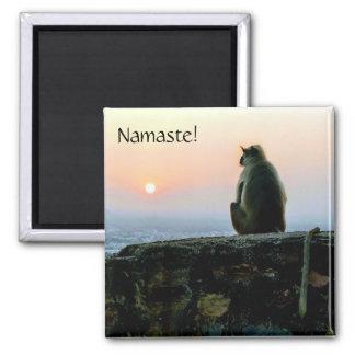 Imã Macaco da ioga da meditação de Namaste em India no