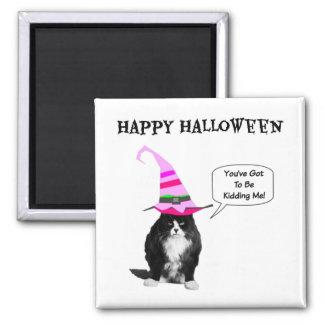 Ímã mal-humorado do quadrado do gato do Dia das Ímã Quadrado