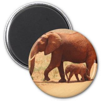 Imã Mamã e Cub do elefante