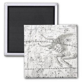 Imã Mapa da placa XIV das constelações