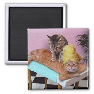 Imã Massagem engraçada do gato