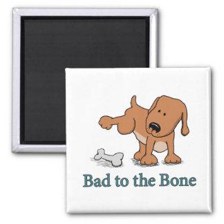 Imã Mau bonito do cão ao osso