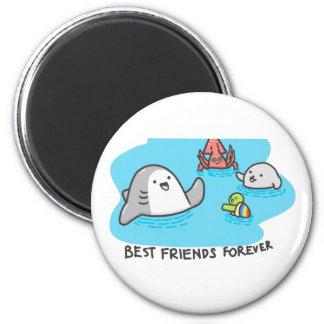Imã Melhores amigos para sempre!