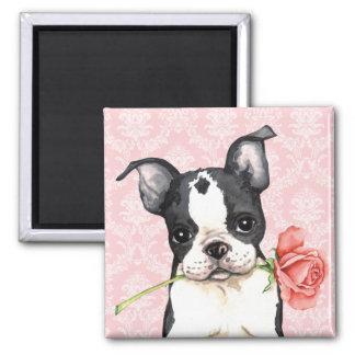 Imã Namorados Boston cor-de-rosa Terrier
