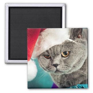 Imã Natal cinzento do gato - gato do Natal - gato do