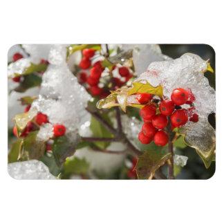 Ímã Neve e gelo vermelhos das bagas do azevinho