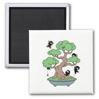Imã Ninjas minúsculo na árvore dos bonsais
