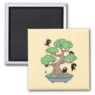 Imã Ninjas minúsculo na árvore dos bonsais no amarelo