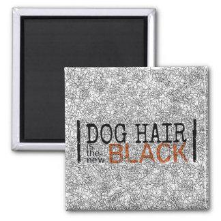 Imã O cabelo de cão é o ímã preto novo