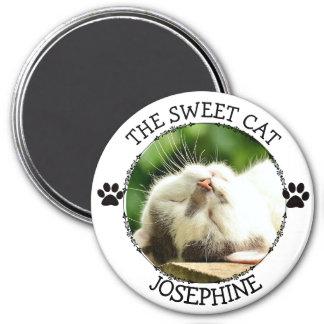 Imã O CAT DOCE: Botão cómico da foto de Pawprints