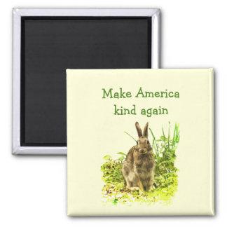 Imã O coelho de coelho de Brown faz o ímã do tipo de