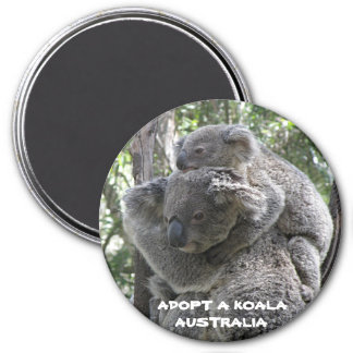 Imã O ímã adota um Koala Austrália ZIZZAGO