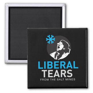 Imã O liberal quadrado do ímã de 2 polegadas rasga o