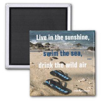 Imã Objetivos da vida da luz do sol e do mar